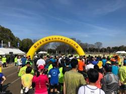 第36回羽生さわやかマラソン大会~トレーナー活動報告~